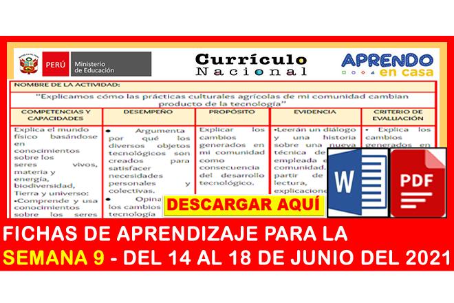 ✅[IMPORTANTE] FICHAS DE APRENDIZAJE PARA LA SEMANA 9 – DEL 14 AL 18 DE JUNIO DEL 2021(Descargar gratis)